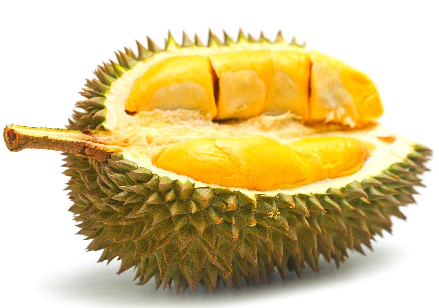 get your musang king durian fix at this year s malaysia festival