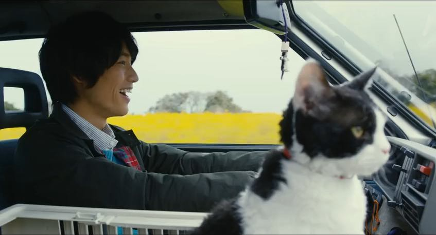 Has Cat, Will Ramen: 5 films from the Japanese Film Festival that are a must see